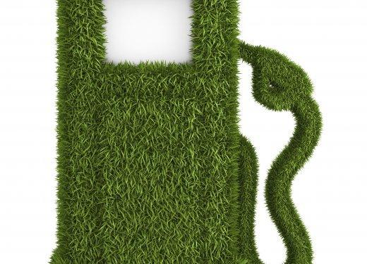 Green grass  fuel pump out