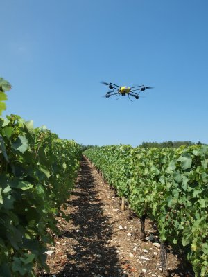 Pairing drones with high-res multispectral sensors and neuronal processers is part of an ambitious project aiming to better detect and treat vine diseases. Combined with precision spraying technologies, this allows for greater agility and efficiency in treating present and emerging threats to vine health that climate change could exacerbate.  (Image taken in France, supplied by Novadem)