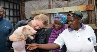 Travel Experiences Fund Humanitarian Programmes